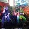 Dave & Taro Acoustic Show